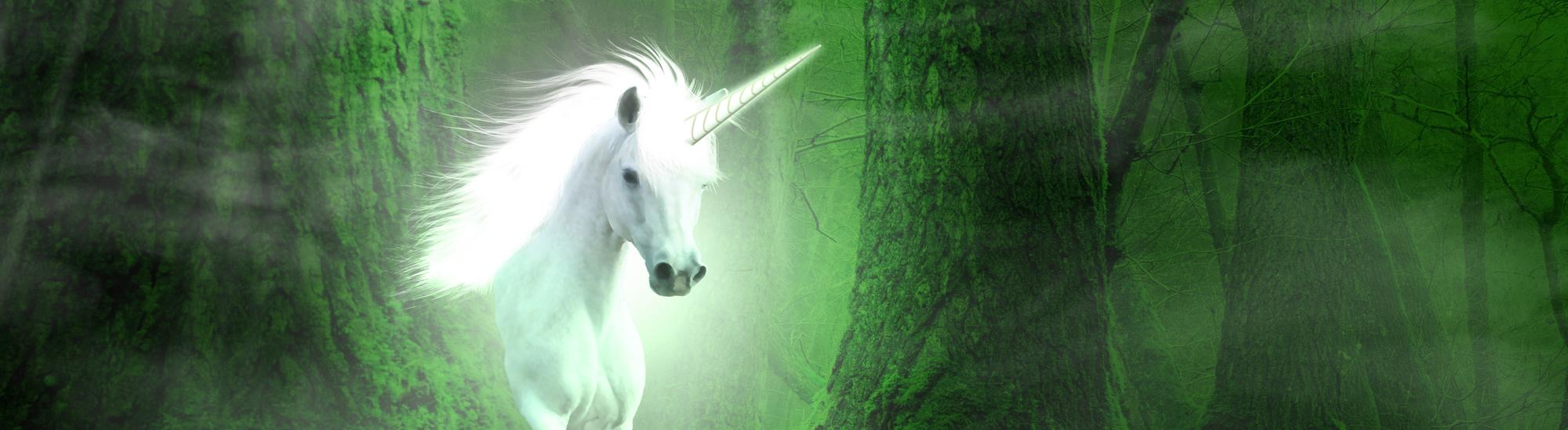 data-scientists-unicorn
